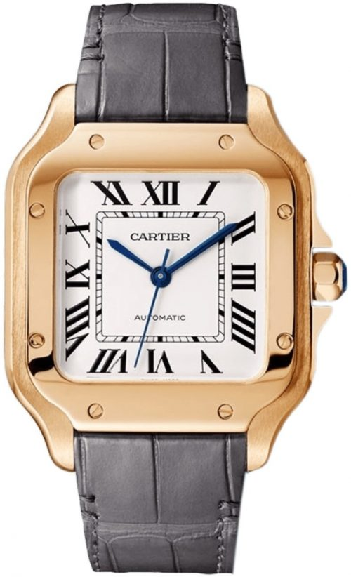 Cartier Santos De Cartier Herrklocka WGSA0028 Silverfärgad/Läder