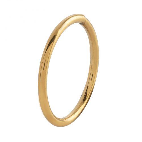 Piercingsmycke ring